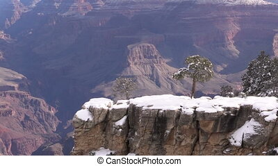 Grand Canyon Winter - the landscape of the grand canyon in...