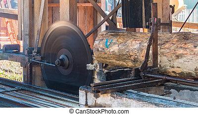 Sawmill Blade - Vintage sawmill cutting through a log of...