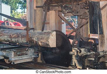 Vintage Sawmill - Vintage sawmill cutting through a log of...