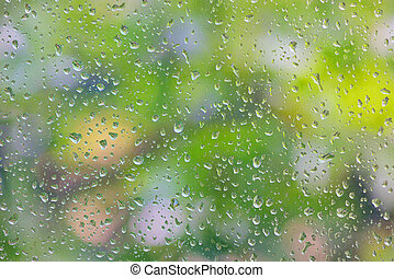 rain drop on window glass with blur tree in background