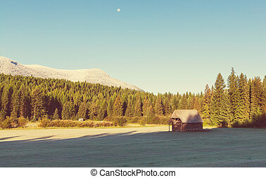 Morning meadow - Field landscape on spring season