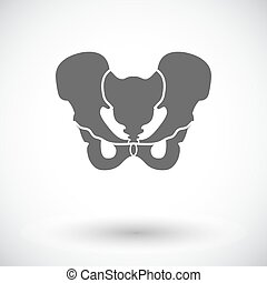 Pelvis Single flat icon on white background Vector...