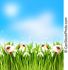 snowdrops and easter eggs with blurred background