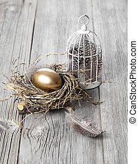 木制, 黃金, 巢, 蛋, 背景