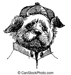 Shih tzu with shirt and hat, hand drawn vector.