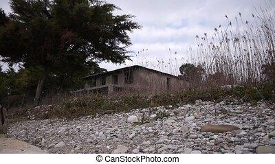 Abandoned Building in Bush at Sea Shoreline