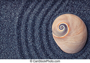 A massive  snail shell in a zen garden with black sand