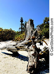 Logs if front of Sanibel Lighthouse