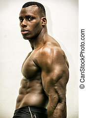 Handsome black male bodybuilder posing in studio shot,...
