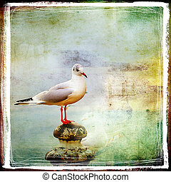 Sea Gull - Artistic Retro Styled Picture