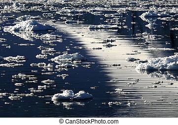 Ice dreamscape