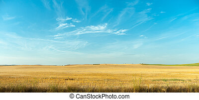 Mancha fields - Arid landscape typical of La Mancha in Spain