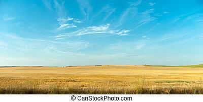 Mancha fields - Arid landscape typical of La Mancha in Spain