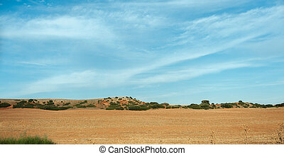 Mancha landscape - Arid landscape typical of La Mancha in...