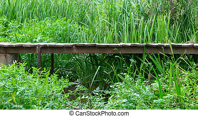 Old elevated rural boardwalk - Old elevated wooden boardwalk...