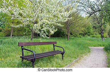 Garden Bench in a park