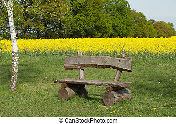 Garden Bench - Garden bench in the park