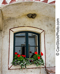 window with flowers - an old window with flowers in stone in...