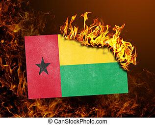 Flag burning - Guinea Bissau - Flag burning - concept of war...
