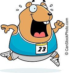Cartoon Hamster Running Race