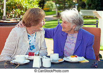 Cheerful Old Women Talking at the Outdoor Table - Two...