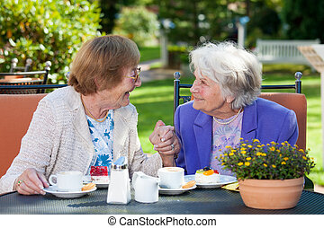 Happy Elderly Women Chatting at the Garden Table - Two Happy...