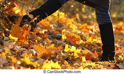 Legs girl on autumn leaves of maple