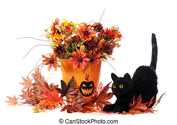 Halloween Cat - A black cat with colorful fall foliage, some...