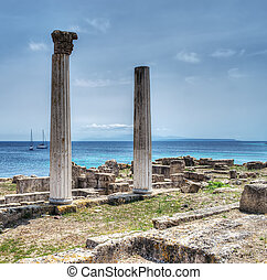 historic columns in Tharros,