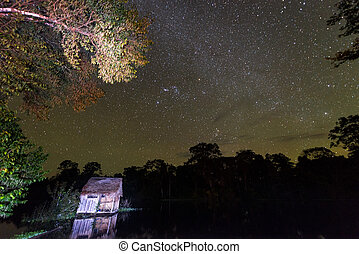 Amazonian Stars - Stars over the Amazon Rainforest with a...