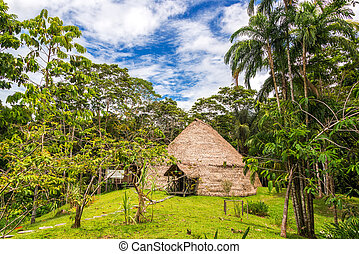 Lodge in the Jungle - Traditional indigenous dwelling known...