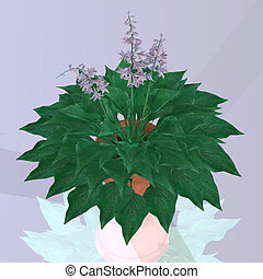 Flower in a pot Image contains a Clipping Path Cutting Path...