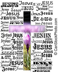cross - A cross with names of Jesus and a crocus