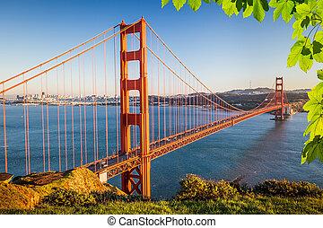 dourado, portão, ponte,