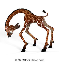 Cute giraffe with a funny face - Rendered Image of a giraffe...