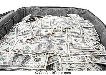 dinero, terreno, maleta