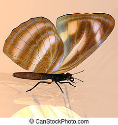 Digital Butterfly - Rendered image of a beautiful butterfly...