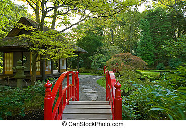 autumn in japanese garden - morning in seasonal autumn park...
