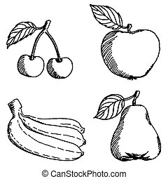 Set of sketch fruits - Vector illustrations of sketch fruits