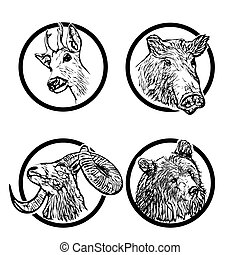 forest animals rings 1
