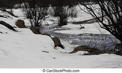 Spring Melting Of Snow On The River, In April