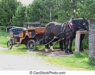 Touristic horse drawn calash waiting for clients