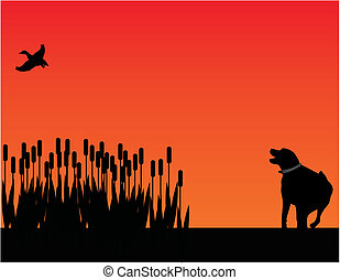 Bird dog hunting at sunset silhouette - Labrador retriever...