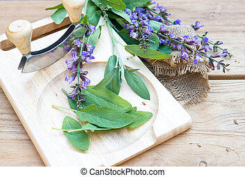 fresh sage leaves and blossoms on wooden cutting board -...