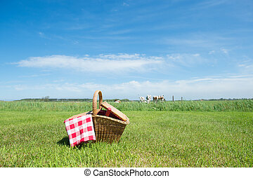Picnic basket in the country - Picnic basket in grass...
