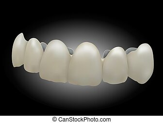 the front ceramic teeth,eps 10. - the front ceramic...