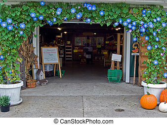 Morning Glory Store - Morning glory arch at the entrance of...