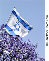 Ramat Gan Park Flag 2005 - Blooming Jacaranda tree and Flag...