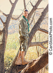 Portrait of Boy Scout Standing in Tree - Full Length...