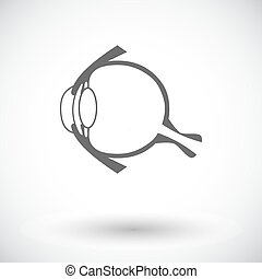 Anatomy eye Single flat icon on white background Vector...